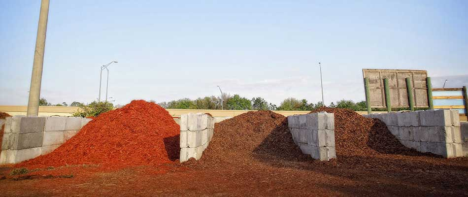Our bulk mulch available for landscape companies to come to our nursery close to Orlando to pick up.