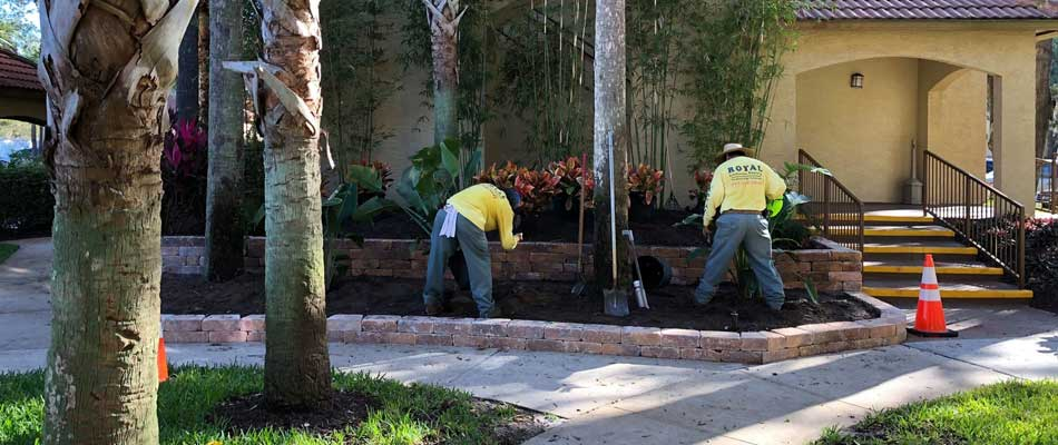 Commercial landscaping services in Winter Garden, FL.
