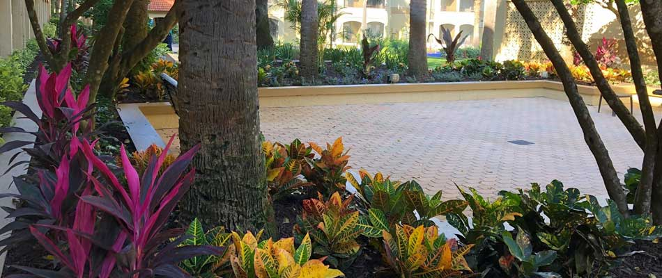 Tropical landscaping installed in the courtyard of a local hotel in Winter Garden, FL..