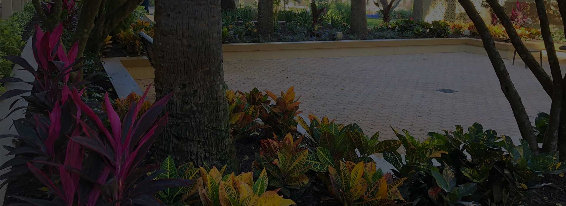 Commercial landscaping installation at a hotel in Orlando, FL.